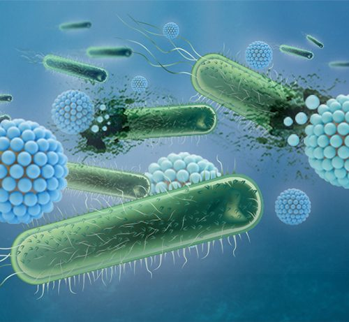 Pathogen Testing
